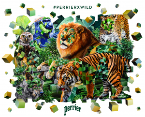 Key_Visual PerrierxWild