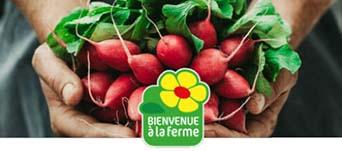 Bienvenue-A-La-ferme-BAF_ACTU_MAI_2019